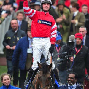 Coneygree wins at the Cheltenham Gold Cup
