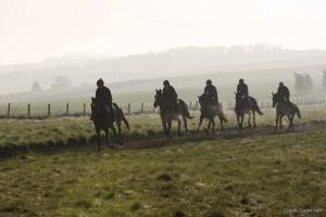 gallops