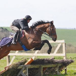 Lord Valentine - one of our horses in training