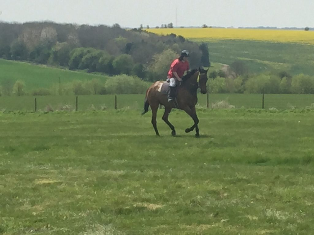 Coneygree May 2016